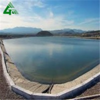 HDPE Flexible Pond Liner