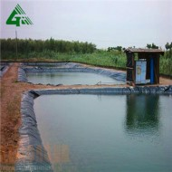 HDPE Geomembrane Shrimp Farm